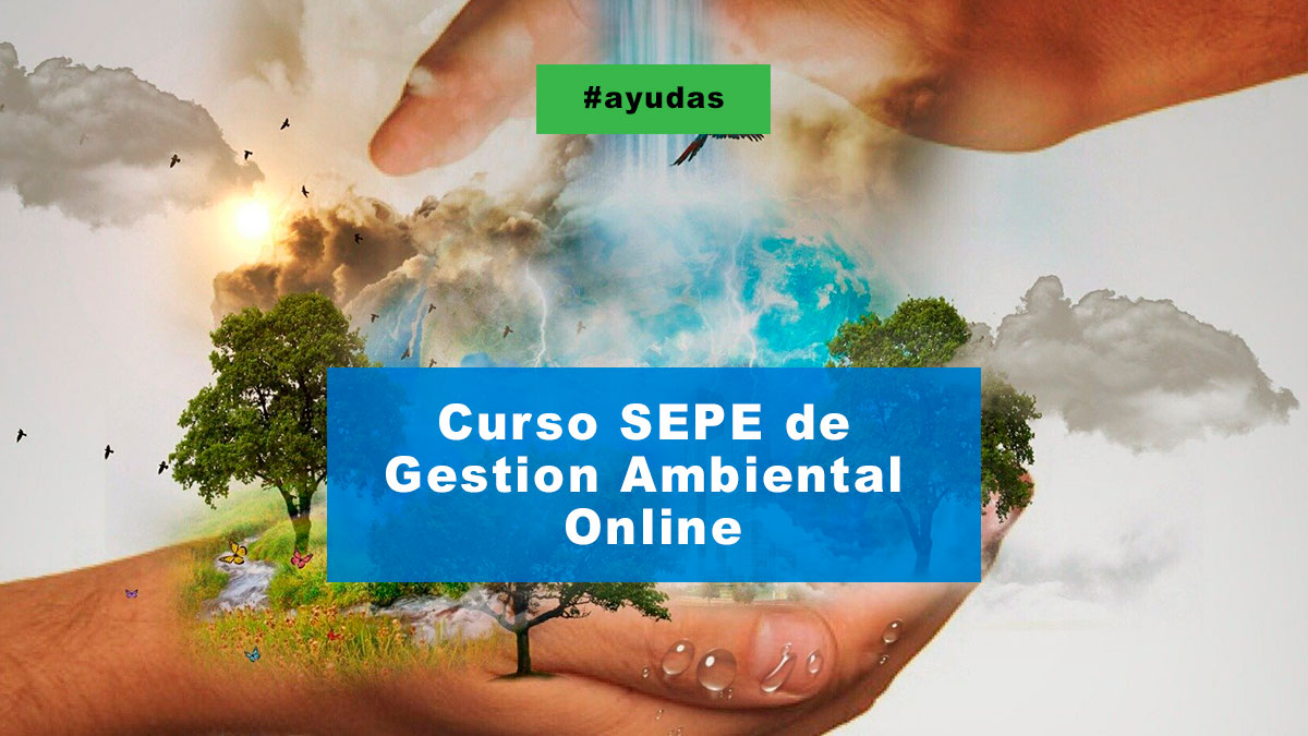 Curso Sepe De Gestion Ambiental Online